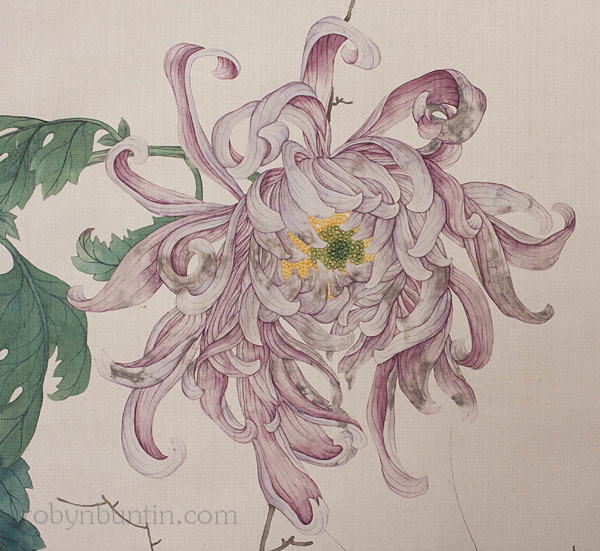 Spider Chrysanthemums by Bo Jieqing(Chinese Scroll)