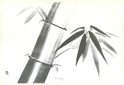 A Spray of Bamboo by Lilian May Miller
