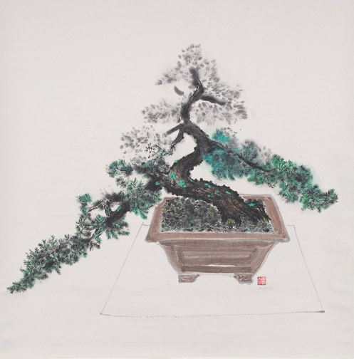 Bonsai Study by Andy Kay(Hawaiian Painting/Drawing)