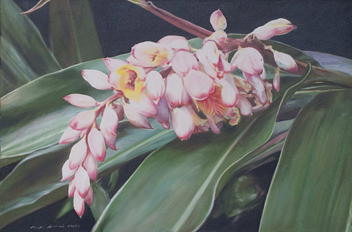 Shell Ginger by Mark Kadota(Hawaiian Painting/Drawing)