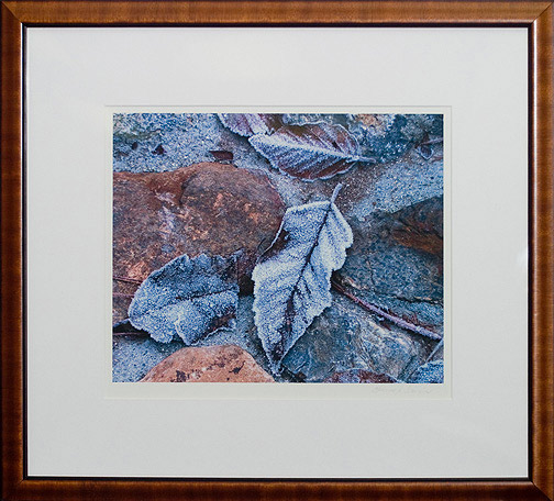 Frost on Leaves by Thomas S. Garcia(Hawaiian Print)