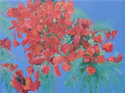 Poinciana II by Linda Hutchinson