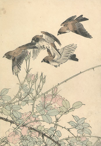 Birds and Roses by Imao Keinen(Japanese Print)