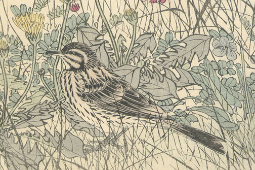 Bird in Flower Patch by Imao Keinen(Japanese Print)